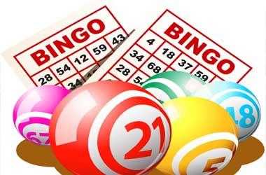Bingo online maioridade 181404