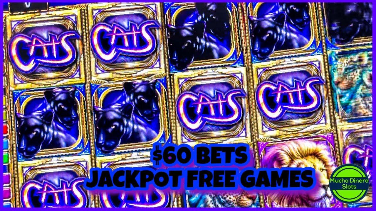 Faturamento casino ganhei 278574